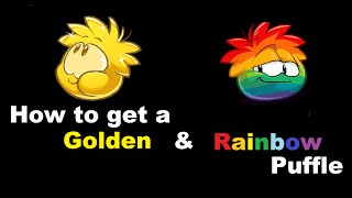 Download Club Penguin - How to get a Golden & Rainbow Puffle Video