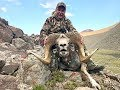 Download Hunting Altay argali and ibex in Mongolia July 2019 Video