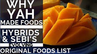 Download WHY YAH MADE FOODS - HYBRIDS & DR SEBI'S EVOLVING FOOD LIST Video