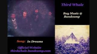 Download Third Whale - In Dreams Video