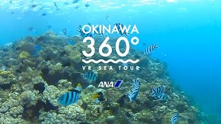 Download OKINAWA 360° -VR SEA TOUR-(沖縄) Video