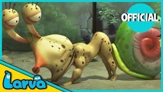 Download LARVA - SECRET OF A SNAIL | Best Cartoon Movie | Videos For Kids | LARVA Official Video