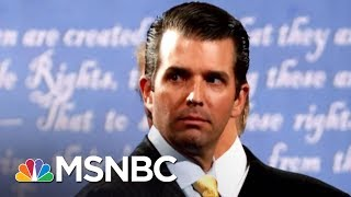 Download Why We Still Don't Know Everything About Donald Trump Jr.'s Meeting | The 11th Hour | MSNBC Video