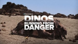 Download Dinosaurs Running From Danger! Video