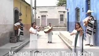 Download El Mariachi, música de cuerdas, canto y trompeta Video