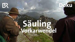 Download Bayerische Berge - Auf dem Säuling und im Vorkarwendel | Bergauf-Bergab | Ganze Sendung | 24.06.2018 Video