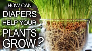 Download Diapers Help Your Plants Grow! Video