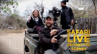 Download SAFARI EXPERIENCE: Barbara Russel Video