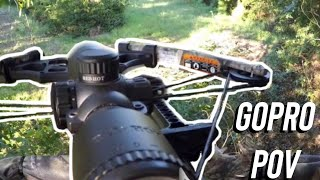 Download 2016 (first) whitetail deer!!! Video