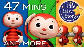 Download Little Baby Bum | If You're Happy and You Know It | Nursery Rhymes for Babies | Songs for Kids Video