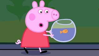 Download Peppa Pig English Episodes | Peppa goes to the Aquarium Peppa Pig Official Video