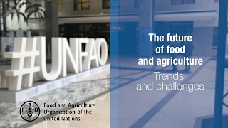 Download The Future of Food and Agriculture: Trends and Challenges Video