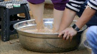 Download 사과 막걸리 만들기! 밑술 섞기! 발로 질겅질겅 막걸리를 밟아라?? (사과향 솔솔~) l 지붕위의 막걸리 6회 Video