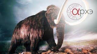 Download Алексей Тихонов: ″Загадки мамонта″ (СПБ) Video