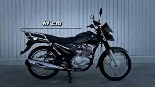 Download Suzuki AX4 Video
