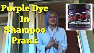 Download Purple Dye in Girlfriend's Shampoo Prank Video