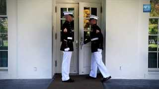 Download Marine Sentries - Inside the White House Video
