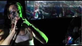 Download Skinny Puppy - Shore Lined Poison (Budapest 2010) Video