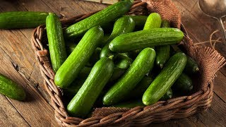 Download After Watching This video, You Are Going To Eat Cucumber Every Day! Video