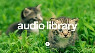 Download Hidden Agenda - Kevin MacLeod (No Copyright Music) Video