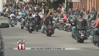Download Gang Violence Worries In Sturgis, SD Video
