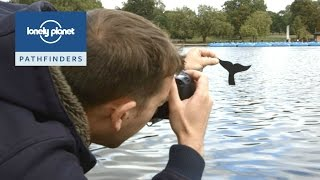 Download How to photograph the world like @paperboyo - Lonely Planet Kids Video