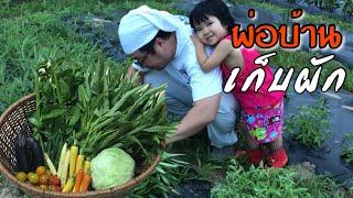 Download พ่อแว่นเข้าสวนเก็บผัก ปลูกผักไทยในญี่ปุ่น Video