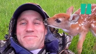 Download Man Saves Abandoned Baby Deer Video