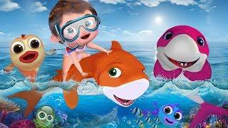 Download Baby Shark , Happy Birthday Song , Wheels on the Bus ,Johny Johny Yes Papa Video