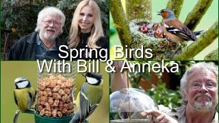 Download SPRING BIRD ADVICE WITH BILL ODDIE & ANNEKA SVENSKA Video