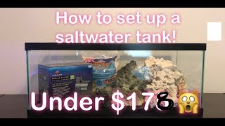 Download How to Set Up A Saltwater Tank for under $200! Video