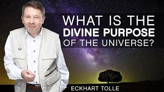 Download The Divine Purpose Of The Universe Video