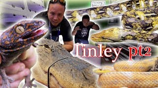 Download More Reptiles at Tinley! Video
