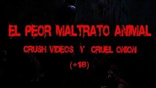 Download Crush vídeos y Cruel Onion| El peor maltrato animal (+18) Video