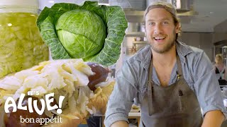Download Brad Makes Sauerkraut | It's Alive | Bon Appétit Video
