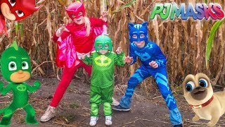 Download PJ MASKS Lost in a Corn Maze Gekko and Owlette Look for Puppy Dog Pals Video