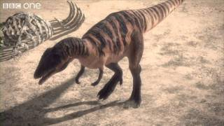 Download Carcharodontosaurus - Planet Dinosaur - Episode 1 - BBC One Video