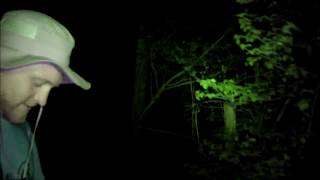 Download Hunters Encounter Aggressive Group of Sasquatch Tsawhawbitts Mountains Video