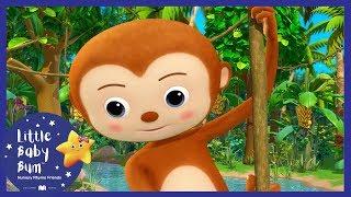Download 5 Little Monkeys Swinging In The Tree + More!   Little Baby Boogie   LBB   Baby Songs Video