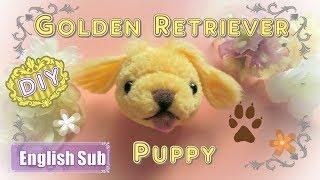 Download 【動物ポンポン】ゴールデンレトリバーの子犬 ~ Golden Retriever Puppy ~ Video