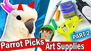 Download HE'S EVIL! MY PARROT PICKS MY ART CRAFT SUPPLIES Challenge #2 Video