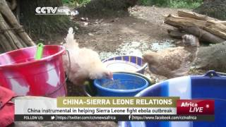 Download China was one of the first countries to respond to Ebola outbreak Video