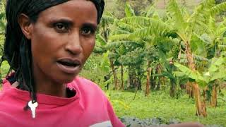 Download Solutions to water scarcity in Rwanda (short) Video