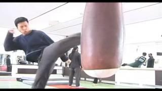 Download Donnie Yen Training Video