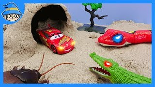 Download Disney Lightning McQueen met an insect in a cave. Snake and spider toy. Video