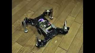 Download Quadruped Robot Shows Wave Walk, Trot Walk Video