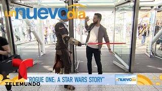 Download Hablamos con Diego Luna, protagonista de Star Wars | Un Nuevo Día | Telemundo Video