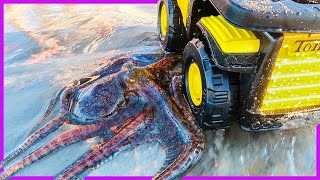 Download 🐙Giant Octopus Steals Axel's Dump Truck 😱 Video