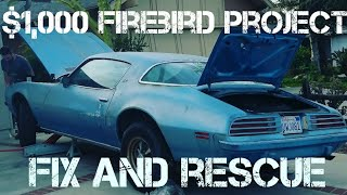 Download extended cut part 1 project 75 firebird rescue, revival, road trip, hot rod show most roadkill award Video