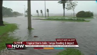 Download Tropical Storm Colin: Tampa impacted with flooding Video